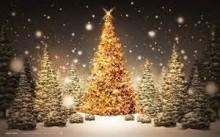 Openingstijden Kerst / Oud & Nieuw